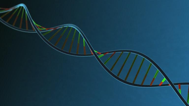 Diagnosing Ankylosing Spondylitis and the Role of HLA B-27 Testing